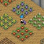 Harvest Moon 64 Screenshot 1