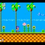 Nemulator Screenshot 1